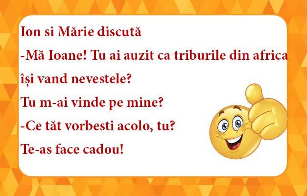Ion-si-Mărie-discută