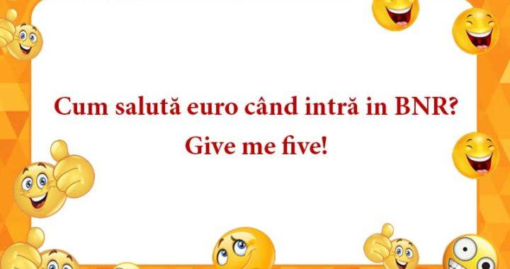 Cum salută euro când intră in BNR?
