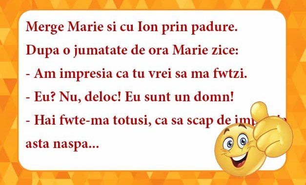 marie-si-ion-in-padure